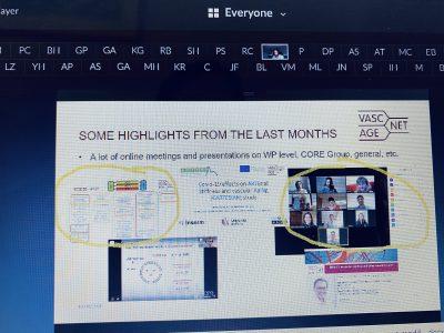 Virtual MC Meeting