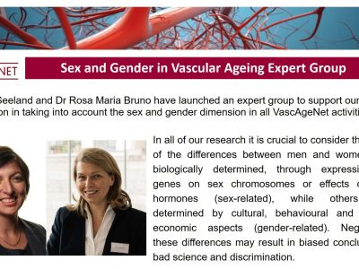 Launch of the Sex and Gender in Vascular Ageing Expert Group