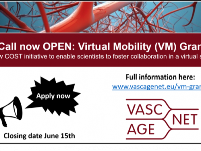 Call open for Virtual Mobility Grants